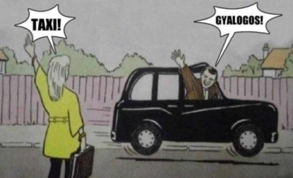 Ezek a legmókásabb mémek az Uber-ellenes tüntetésről 2
