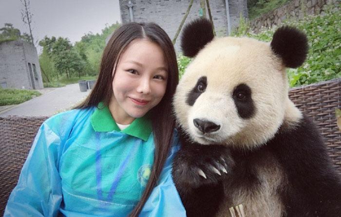 Ezek a fotogén pandák bárkinél jobban pózolnak