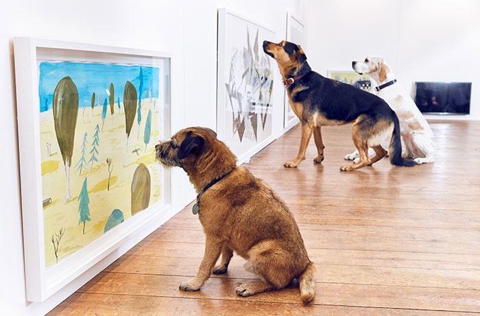 Ezen a furcsa kiállításon kutyák a látogatók
